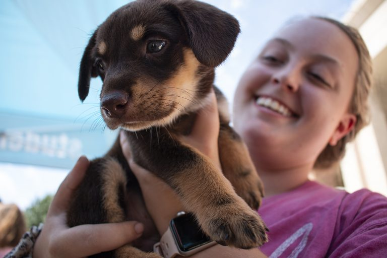 Alexis Lunsford holds a puppy outside the student union as part of the Welcome Week festivities. Welcome Week events are hosted by the Student Activities Association. Photo by Billy Schuerman.