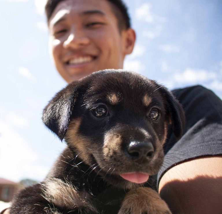 Shimba Ochiai holds a puppy outside the student union as part of the Welcome Week festivities. Welcome Week events are hosted by the Student Activities Association. Photo by Billy Schuerman.